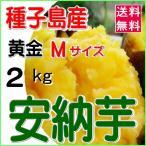 種子島産 安納芋 紅 5kg/正品 Lサイズ/焼き芋・お菓子・天ぷら用/南種子町日高農園産