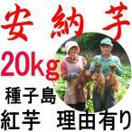 安納芋 訳あり 10kg 種子島産 超お買得品 生産者直売でないと出来ない価格でお届けします。