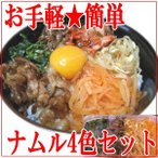 ナムル 4色セット 1kg入(大根、豆もやし、ホウレンソウ、ぜんまい 各250g) 国産