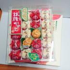 信州林檎かのこ20個入り【送料無料小型便/明細・のし不可】信州長野県のお土産 りんごのお菓子