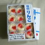 信州長野県のお土産林檎(りんご)のお菓子|民芸菓子信州りんご12個入