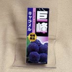 信州長野県のお土産 お菓子 地域限定巨峰キャラメル18粒入