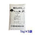 【送料無料】種子 バミューダグラス 3kg【お徳用】300〜370平米分