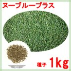 西洋芝 種子 ケンタッキーブルーグラス ヌーブループラス 1kg 50〜100平米分