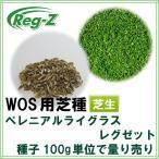 西洋芝 種子 ペレニアルライグラス レグゼット 100g 1〜4平米分