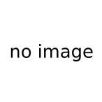 いちえふ 福島第一原子力発電所労働記 1 竜田一人 /古本