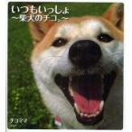 新品本/いつもいっしょ 柴犬のチコ。 チコママ/著