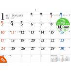 新品本/カレンダー '16 E51 壁掛B3
