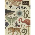 新品本/アニマリウム ようこそ、動物の博物館へ ジェニー・ブルーム/著 ケイティ・スコット/絵