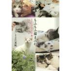 新品本/もふもふ猫まみれ とよたさんちのマブ猫22のハッピールール とよた真帆/著・写真画像