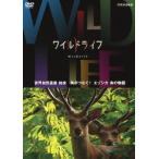新品/DVD/NHK DVD::ワイルドライフ 世界自然遺産 知床 角がつなぐ! エゾシカ 命の物語 (ドキュメンタリー)