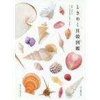 新品本/ときめく貝殻図鑑 寺本沙也加/文 池田等/監修 大作晃一/写真