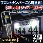 LED ナンバーボルト ナンバー灯 ボルトタイプ 2個セット フロントナンバープレート 汎用 パーツ カスタム ドレスアップ