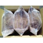 オオクワ専用 スーパー発酵マット 約10L袋×5袋セット(送料込み)