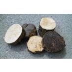 転倒防止や隠れ木などに(産卵材の端材)5〜6個セット