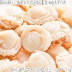 (ホタテ ほたて) ベビー ホタテ貝柱 (ボイル) 北海道産 1kg(ミニホタテ)
