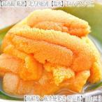 ウニ 北海道 塩水 生エゾバフンウニ 300g(100g×3 北方四島産 うに)獲れたてそのままの自然の美味しさ。ギフトにも大好評、高評価ありがとうございます!