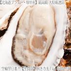 (送料無料 厚岸産 むき牡蠣)生食用(生)ムキ牡蠣 1kg 50個前後(牡蠣鍋 北海道厚岸漁業協同組合直売商品 水揚げ日に空輸で翌日着!)