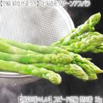 蘆筍 - 北海道産 アスパラガス グリーンアスパラ 3kg (1kg×3 最高級 2L〜M)北海道から航空便で翌日お届け高鮮度、ギフトにも大好評、高評価ありがとうございます!