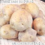 (送料無料 じゃがいも 男爵いも 北海道産)北海道 男爵イモ L 3kg(ジャガイモ 正規品 最高級 収穫日に空輸で翌日着!北海道ブランド 特別栽培農園産)