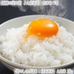 (北海道 米) おぼろづき 北海道産 (白米) 20kg (28年産 10kg×2 一等米)