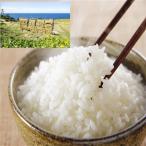 新米 H28年産/お試し品:6合(900g) 特A一等米 無洗米 能登コシヒカリ/送料無料