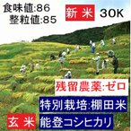 新米予約 コシヒカリ 玄米 20年産 特別栽培 棚田米(食味値86) 30K 能登里山の米