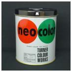 ターナー ネオカラー 600ml缶入・専門家用 C色 黒