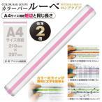 共栄プラスチック カラーバールーペ21cmピンク(ピンク)
