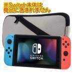 Nintendo Switch   ソフトケース ニンテンドースイッチ