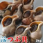 天然 活 真つぶ 真ツブ マツブ 2kg前後 10-20個前後 送料無料 沖縄は送料別途加算