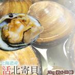 ほっき貝 活 送料無料 2kg(6-8個) 北海道産 ホッキ貝 北寄貝 ※沖縄は送料別途加算