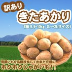 「新じゃが」きたあかり 訳あり 北海道 じゃがいも L-2Lサイズ9.5-10kg前後 送料無料 キタアカリ