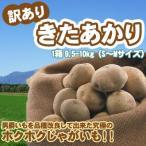 「新じゃが」きたあかり 訳あり 北海道 じゃがいも S-Mサイズ9.5-10kg前後 送料無料 キタアカリ