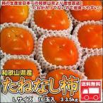 たねなし柿 秀品 L 3kg 送料無料 和歌山産 北海道、沖縄・離島は送料別途加算