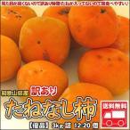 和歌山産 訳ありたねなし柿 3kg詰 送料無料 北海道、沖縄・離島は送料別途加算
