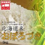 北海道産 おぼろづき5kg  北海道米 おぼろづき おためし 送料無料沖縄は送料別途加算