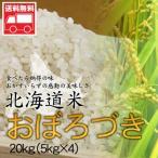 北海道産 おぼろづき20kg(5kg×4)  北海道米 おぼろづき おためし 送料無料沖縄は送料別途加算
