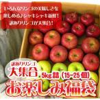 りんご 訳あり 福袋 5kg 青森もしくは北海道産 リンゴ 送料無料※沖縄は送料別途加算 セール