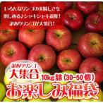 りんご 訳あり 福袋 10kg 青森もしくは北海道産 リンゴ 送料無料※沖縄は送料別途加算 セール