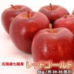 りんご 北海道産 蜜入 レッドゴールド リンゴ 5kg 約20-30個入  送料無料沖縄は送料別途加算