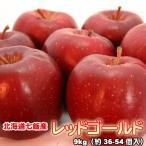 りんご 北海道産 蜜入 レッドゴールド リンゴ 9kg 約36-54個入  送料無料沖縄は送料別途加算