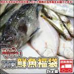 鮮魚を急速冷凍北海道お魚福袋2kg送料無料