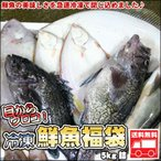 鮮魚を急速冷凍北海道お魚福袋5kg送料無料