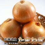 玉ねぎ 送料無料 北海道 たまねぎ 5kg L 玉葱 タマネギ ※沖縄送料別途加算