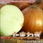 たまねぎ 送料無料 10kg 玉ねぎ 玉葱 タマネギ 北海道産 Lサイズ 沖縄送料別途加算