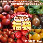 ショッピングトマト 北海道産 ミニトマト 福袋 バラ詰め 1kg 送料無料 ※沖縄は送料別途加算