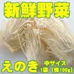 新鮮野菜 バイキング えのき 中サイズ 1袋(株100g)