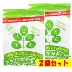 モリンガかぞく 大容量約6か月分 2個セット モリンガ家族 腸活ダイエット 野菜 乳酸菌 食物繊維 モリンガサプリヒルナンデス