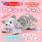 あすつく  なでなでねこちゃんDX3 アメショーちゃん ぬいぐるみ センサー 猫  ねこ ネコ アメショ アメリカンショートヘアー  鳴き声 高齢者 こども ペット